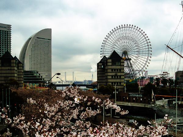 япония, иокогама