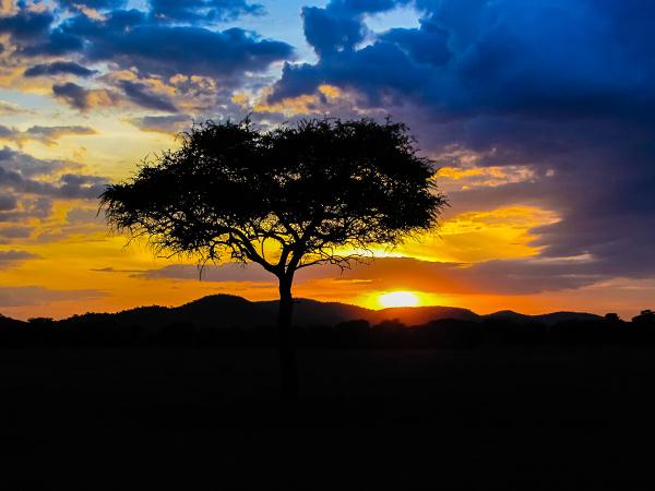 танзания, закат1