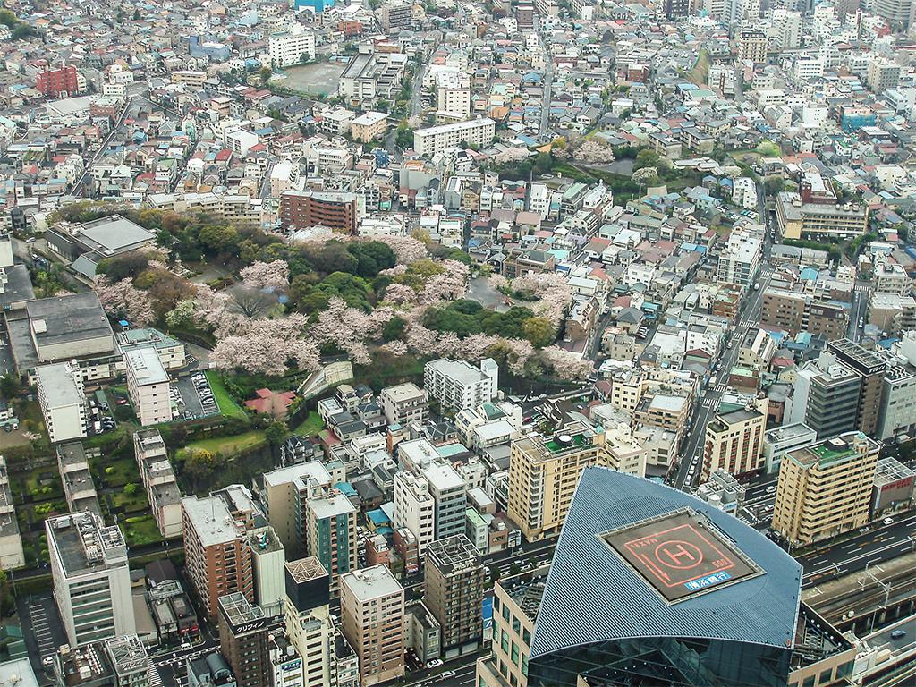 Йокогама1