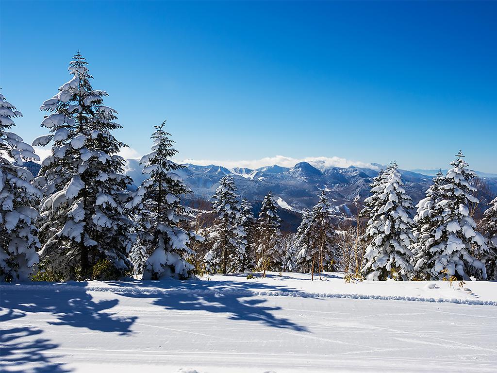 япония-горнолыжный-курорт-2