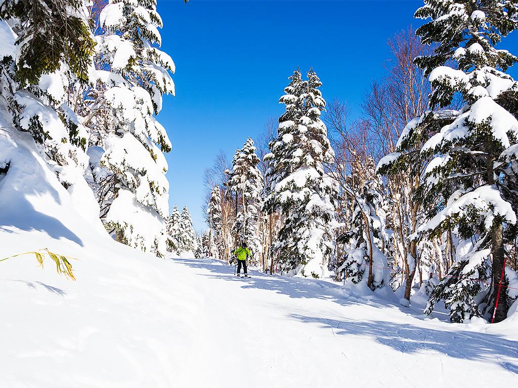 япония-горнолыжный-курорт-3