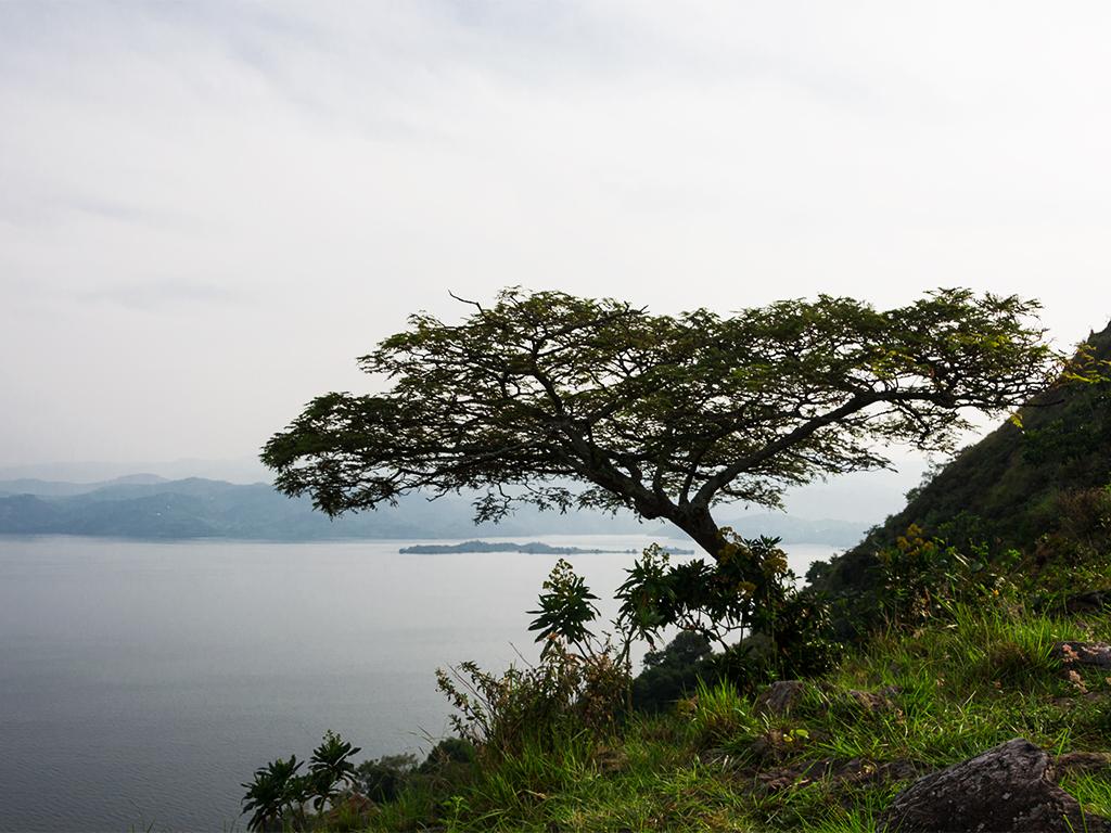 руанда-озеро-киву-1
