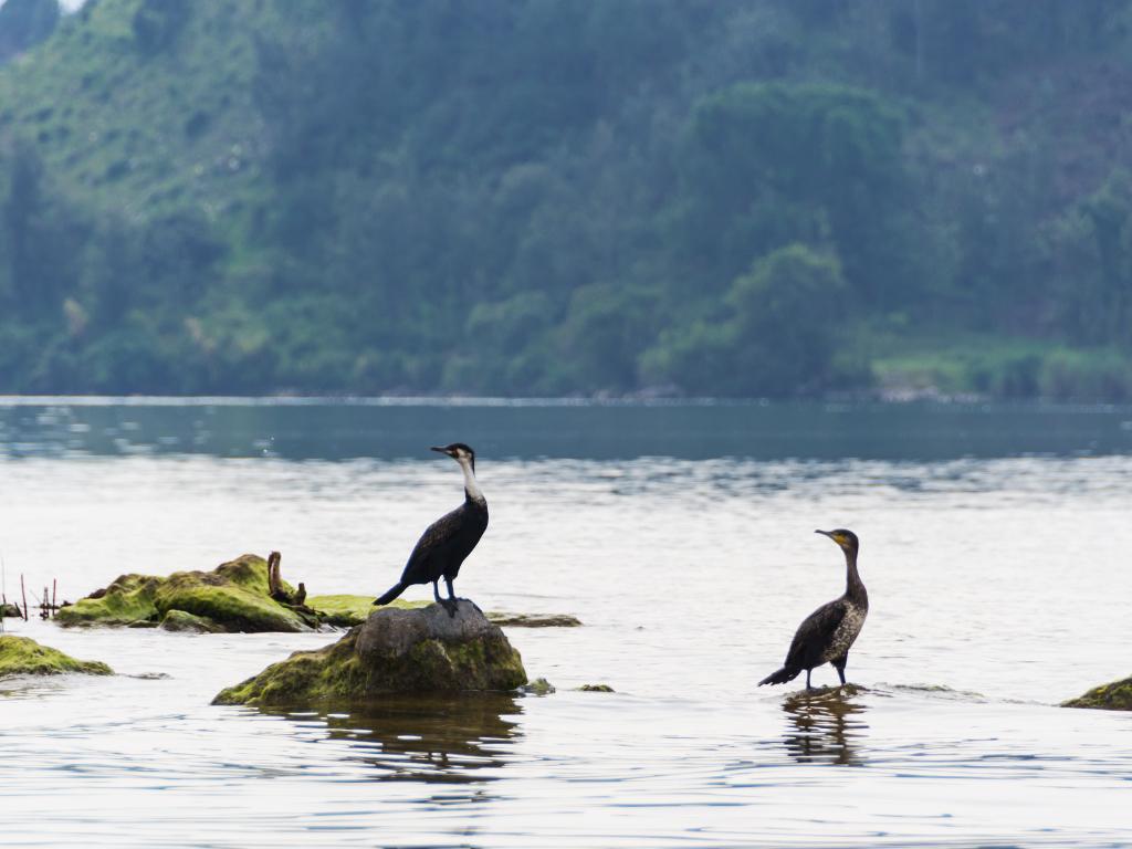 руанда-озеро-киву-5