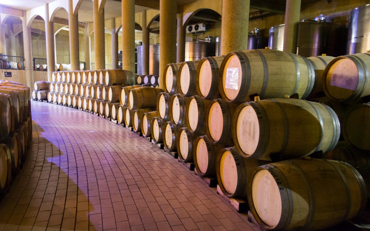 вина-сантьяго-чили-2