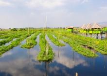 бирма-озеро-инле-2