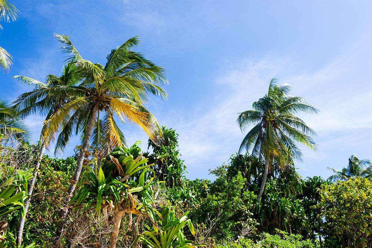Тембеланские острова Индонезия 02