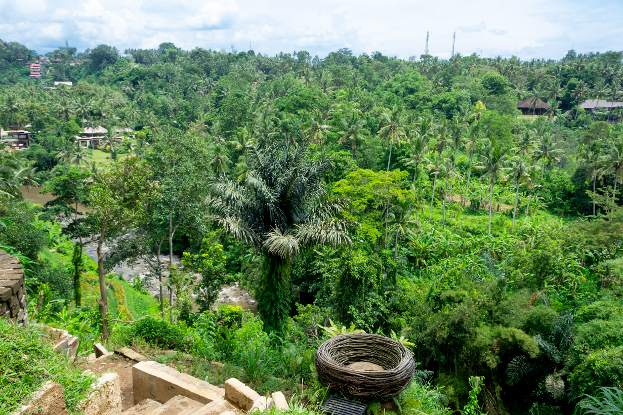 бали-индонезия-природа-04