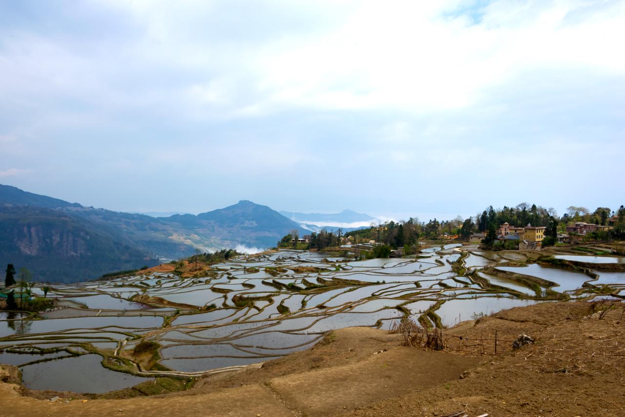 китай-рисовые-поля-05